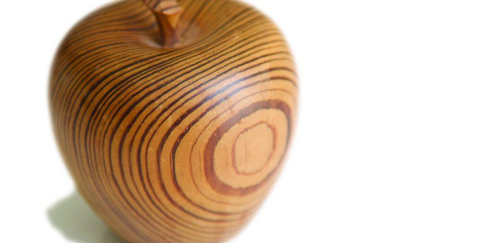 Stilul scandinav in baile din lemn