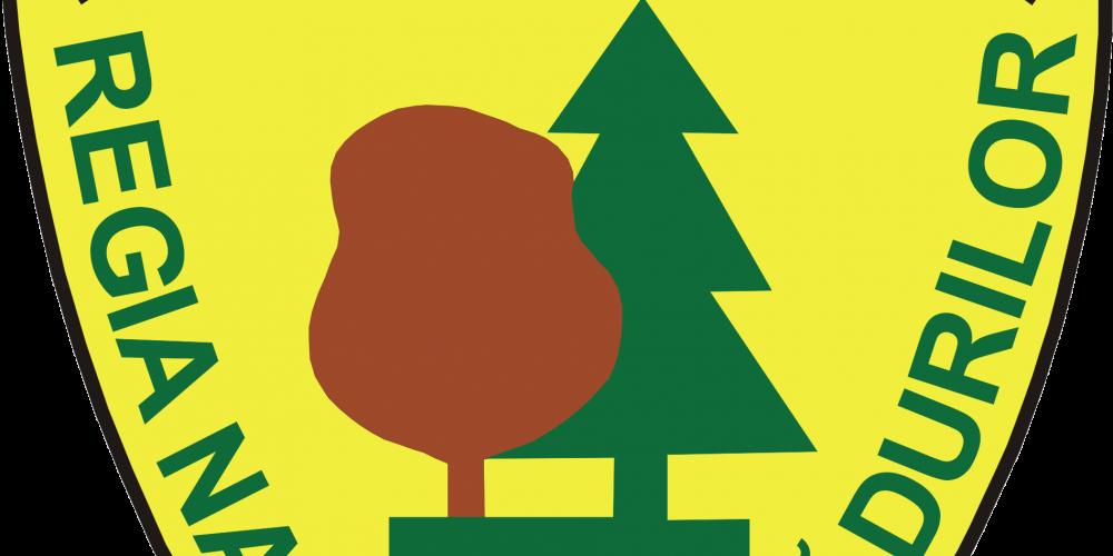 Pretul lemnului a crescut peste 27 la suta la Romsilva
