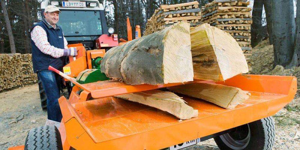 Despicatoare lemn – SplitMaster -Posch