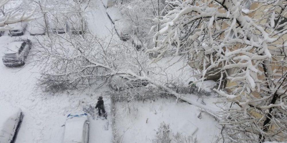 Romania sub cod portocaliu – conditii meteo dificile pana in 26 ianuarie